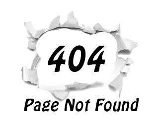 wordpress 404 error page